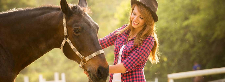 Futtermittelberatung Pferde